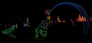 Winterfest of lights in Ocean City Md