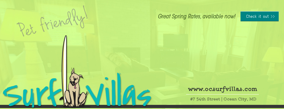 Great Spring rates at a pet friendly place!!