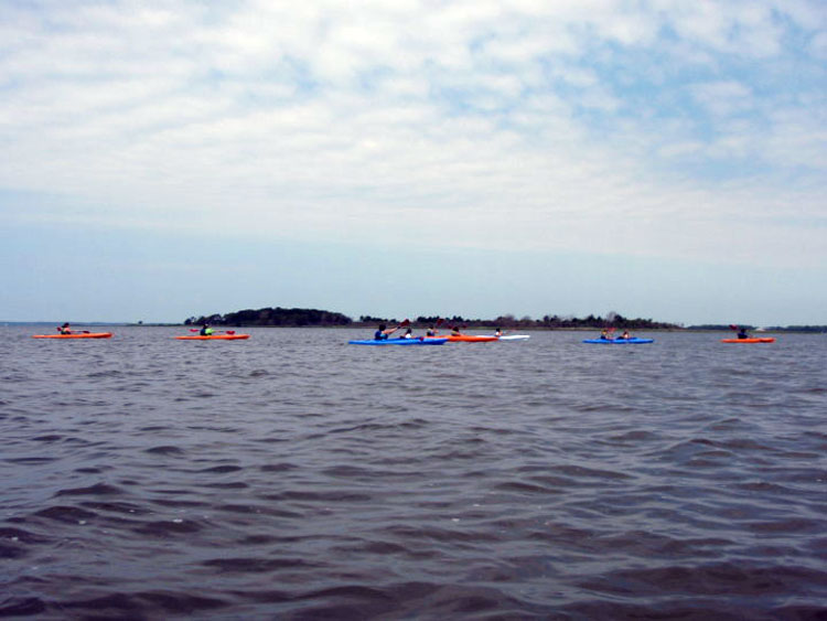Group of kayaks in the Sinepuxent Bay.