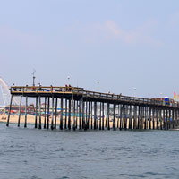 Grab your fishing pole and cast off the ocean city pier, just a couple blocks north.