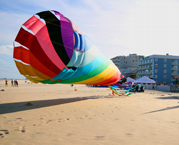 Kites galore at the beach in Ocean City Md