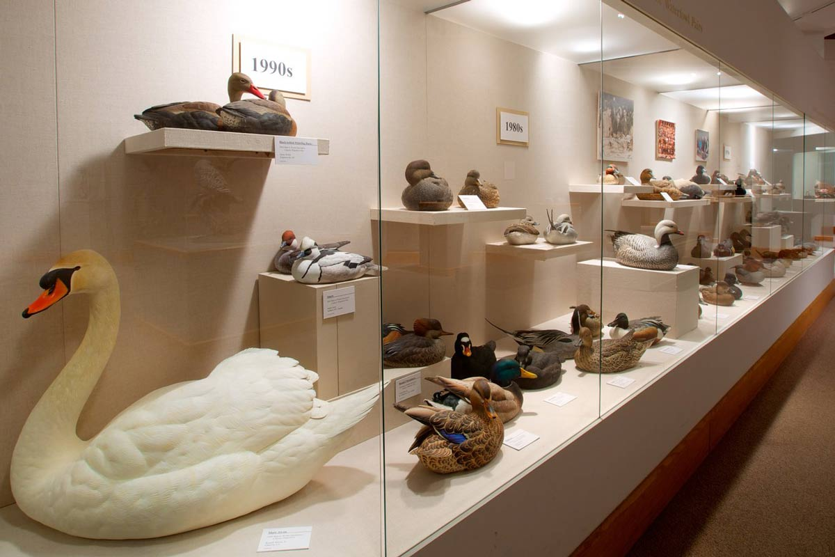 ward museum salisbury maryland